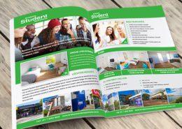 portfolio bsa brochure